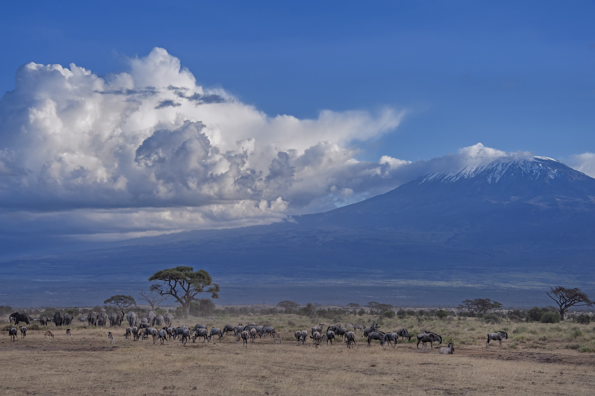 Amboseli National Amboseli National Park