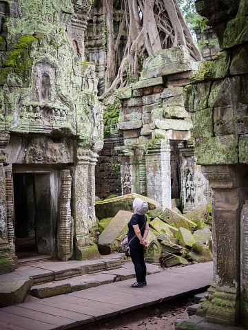 Reverence at the Jungle Temple -