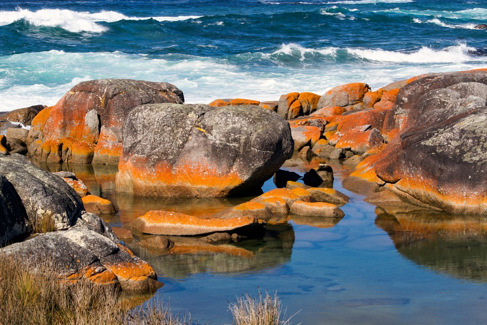 Natural palette, Bay of Fires - Bay of Fires
