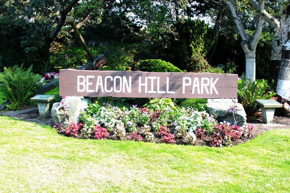 Beacon Hill Park (1) - Beacon Hill Park