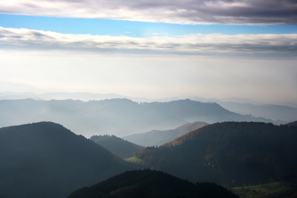 Aussicht - Black Forest