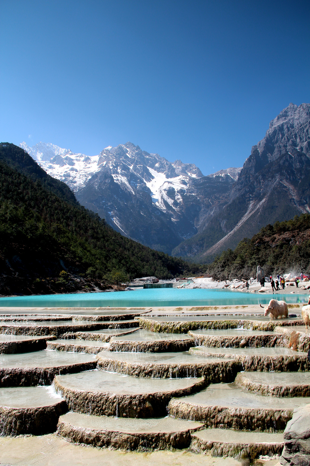 blue moon valley valley in yunnan thousand wonders