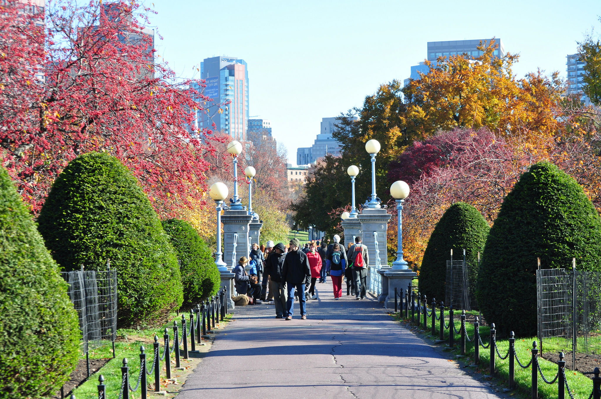 Take A Walk Through Boston Public Garden