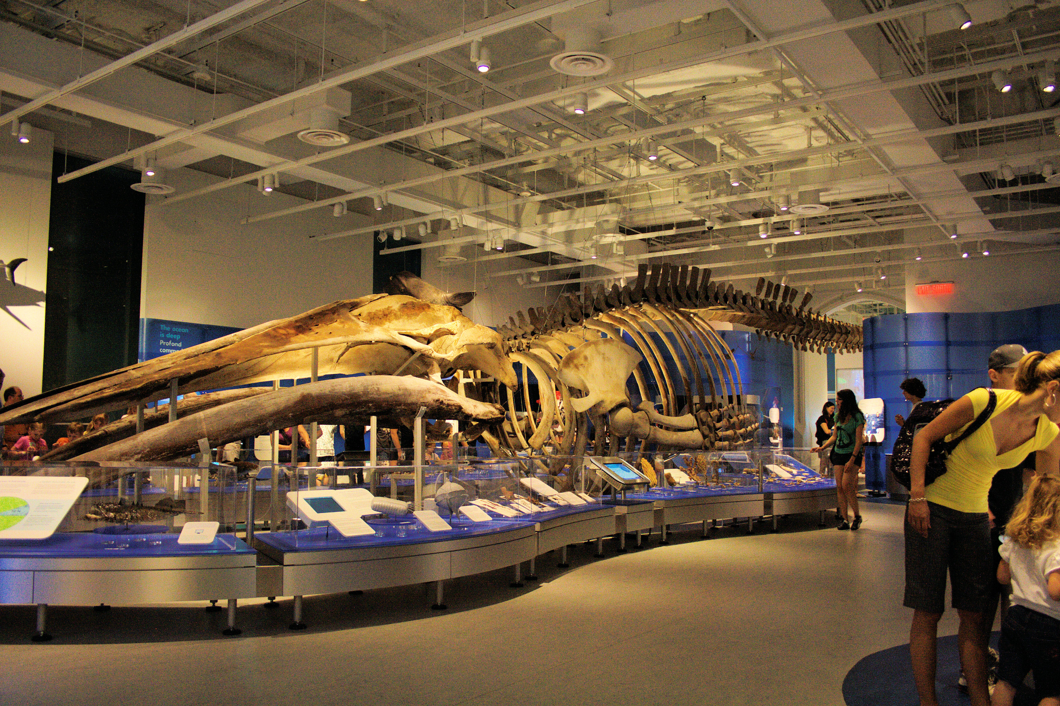 Canadian Museum Of Nature Coupon