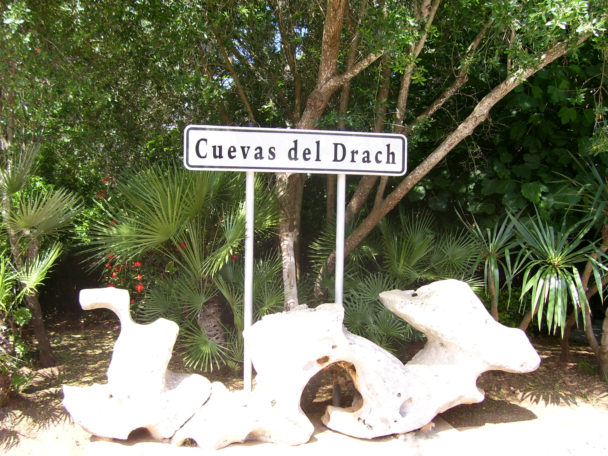 Caves Of Drach Cave In Mallorca Thousand Wonders