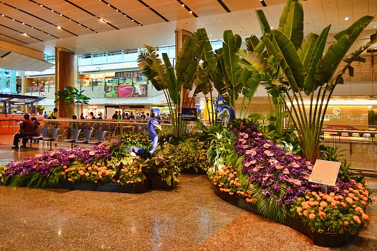 Changi International Airport