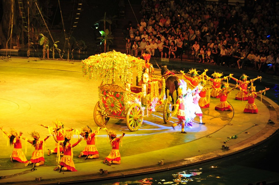 Chimelong International Circus