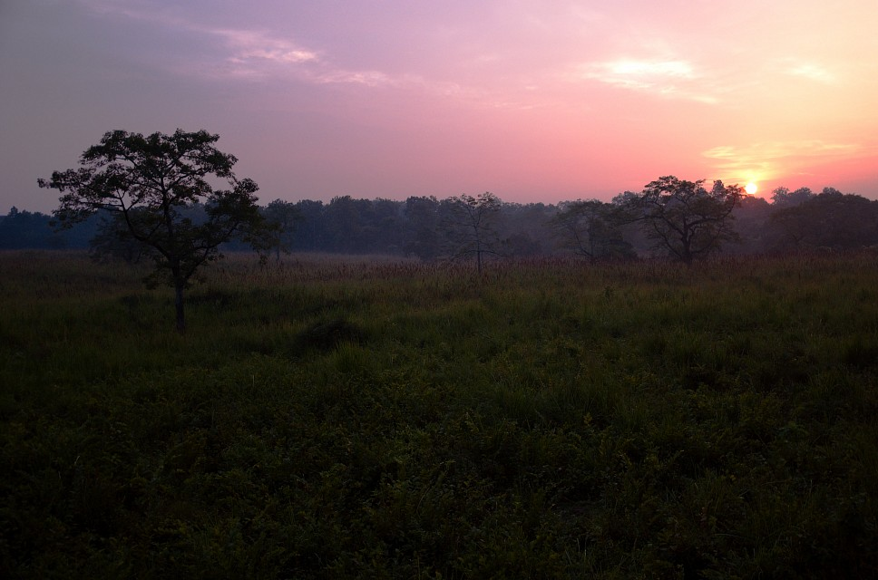 Sunset
