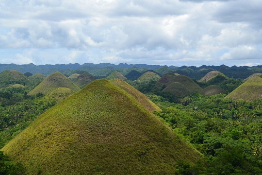 The Chocolate Hills -