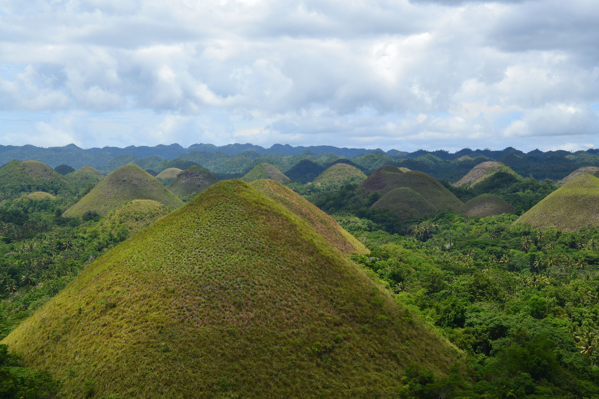 The Chocolate Hills - Chocolate Hills Natural Monument
