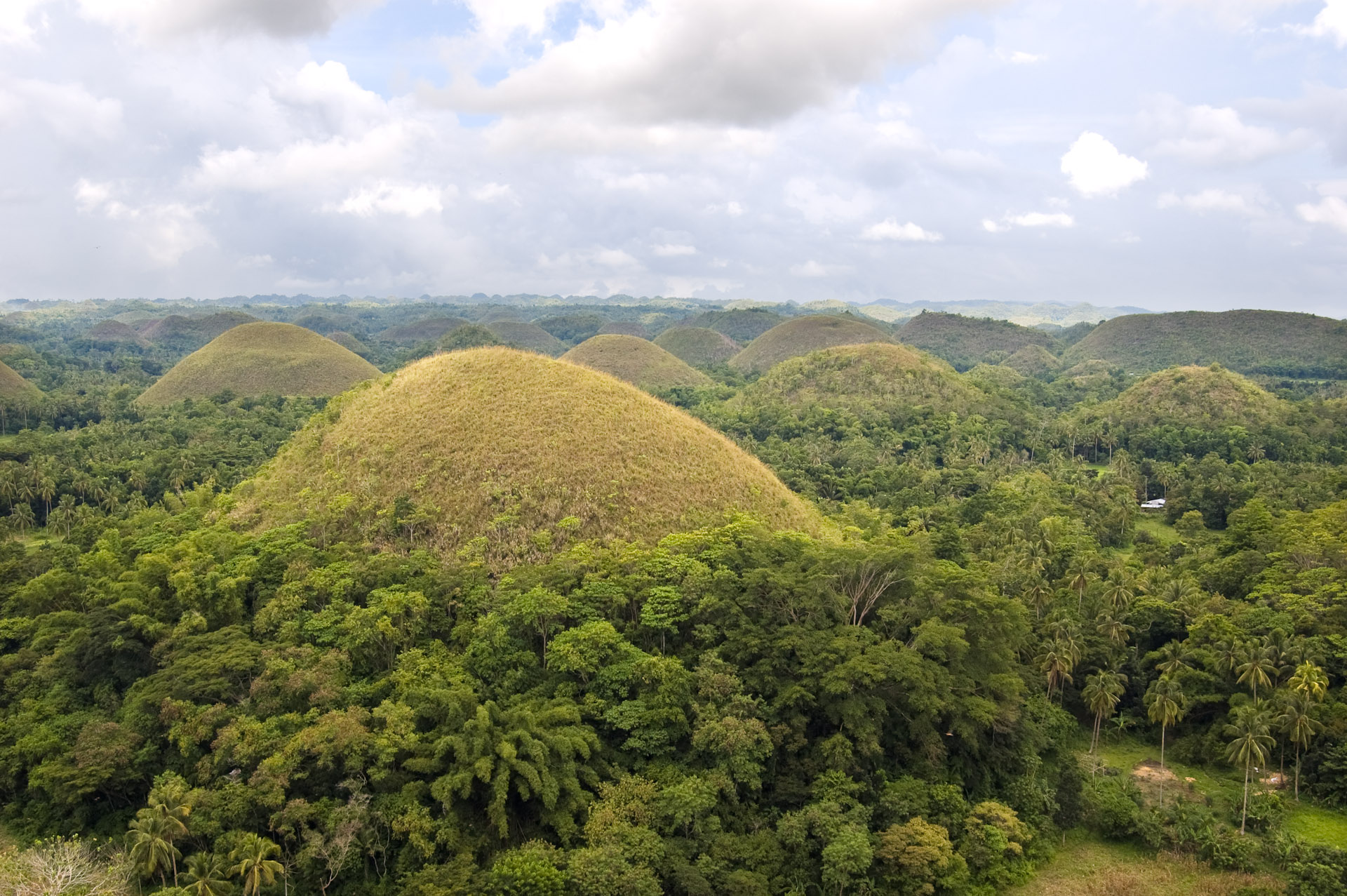 Chocolate Hills - Chocolate Hills Natural Monument