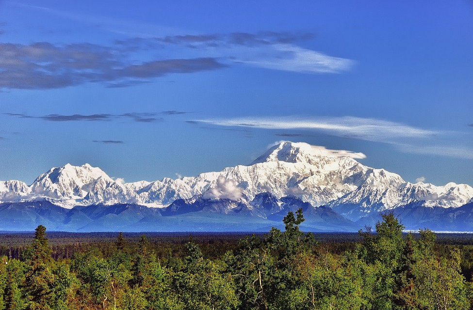 Morning in Denali - Denali