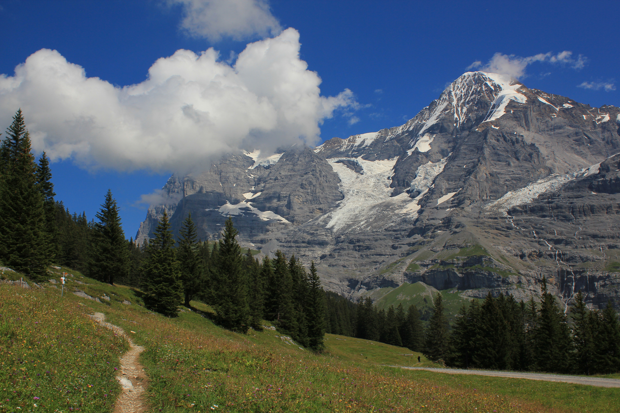Swiss mountains, the Eiger north face and Mönch