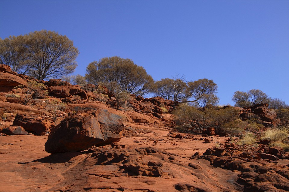 mpaara - Finke Gorge National