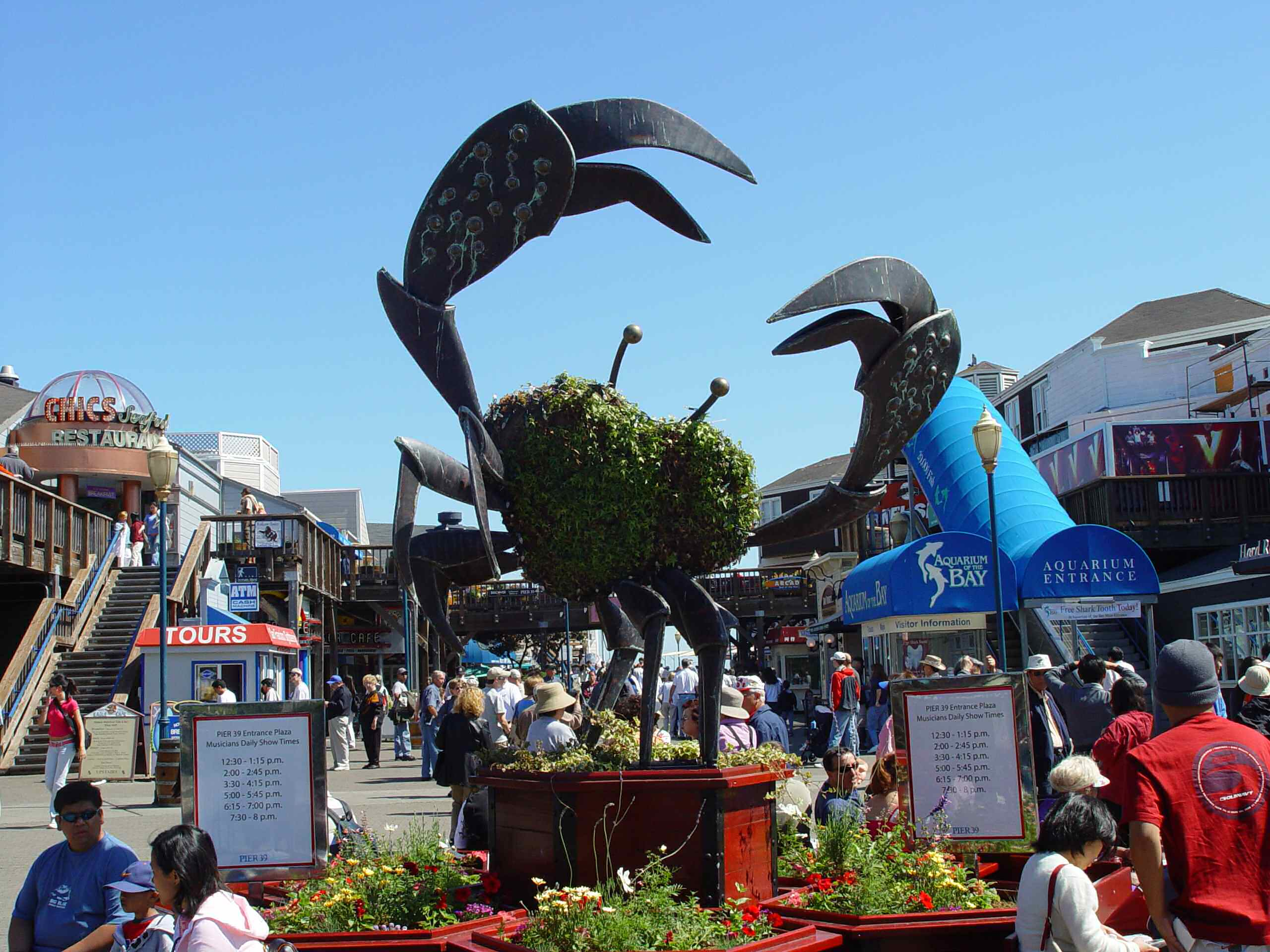 Fisherman 39 s wharf in san francisco thousand wonders - San francisco tourist information office ...