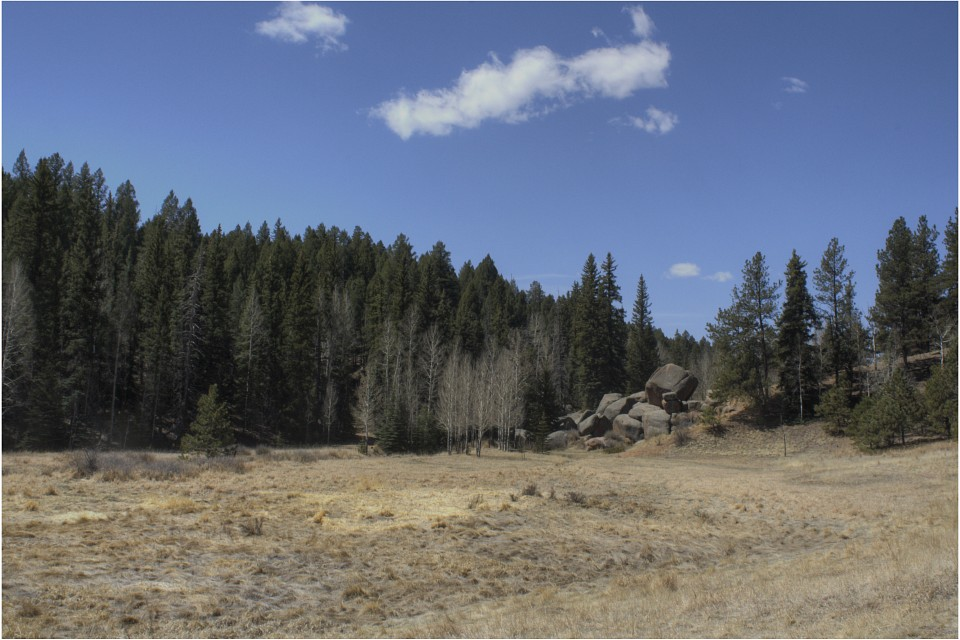 - Florissant