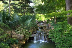 Other Pictures Of Fort Worth Botanic Garden