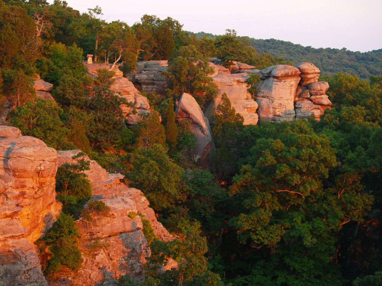 Garden of the Gods Wilderness - Protected Area in Illinois ...