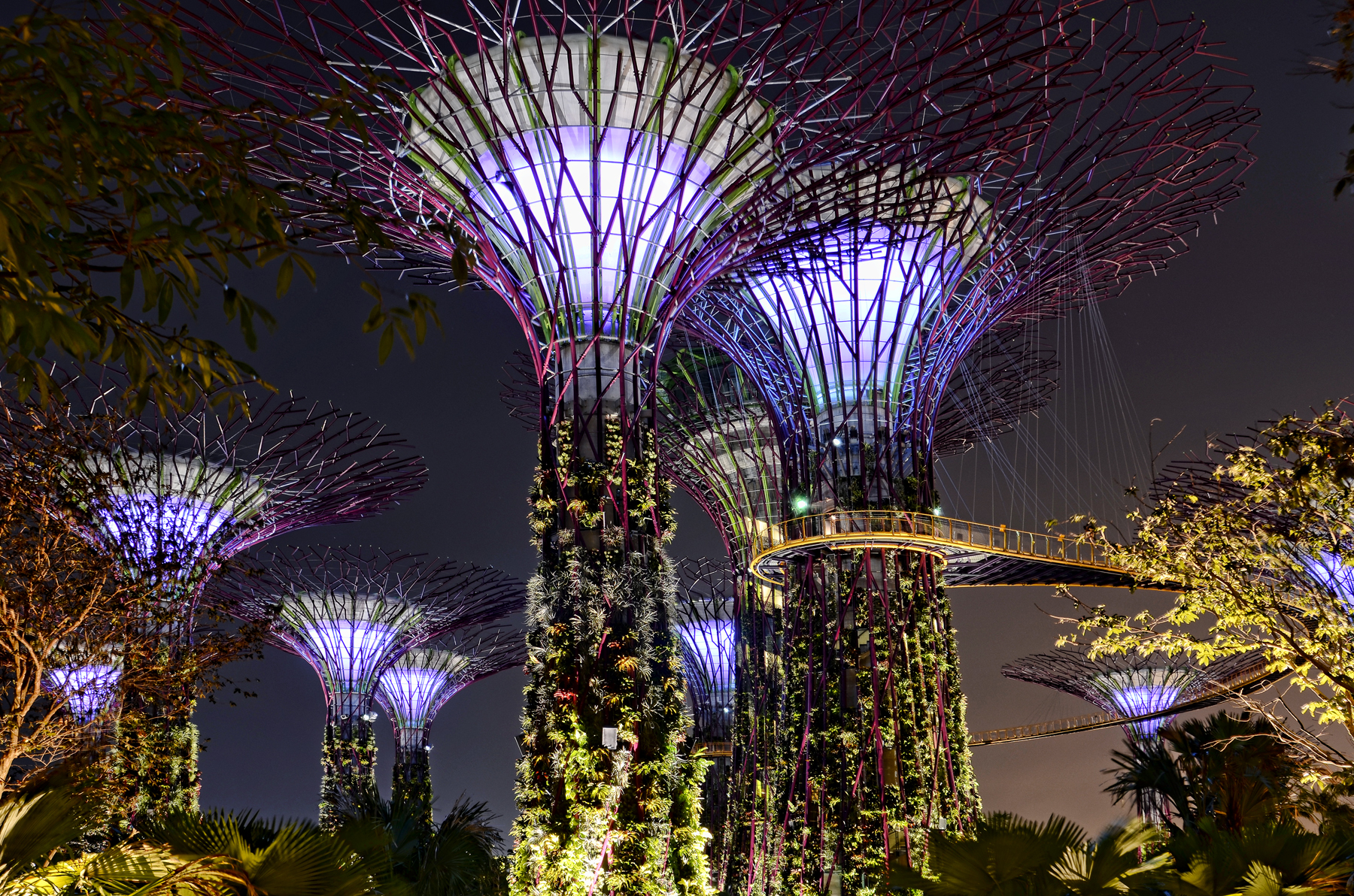 Gardens by the bay urban park in singapore thousand wonders - Garden by the bay flower show ...