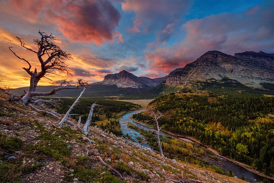 Glacier National Park's Scree Scram Sunrise - Glacier National Park
