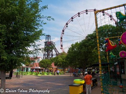 - Gold Reef
