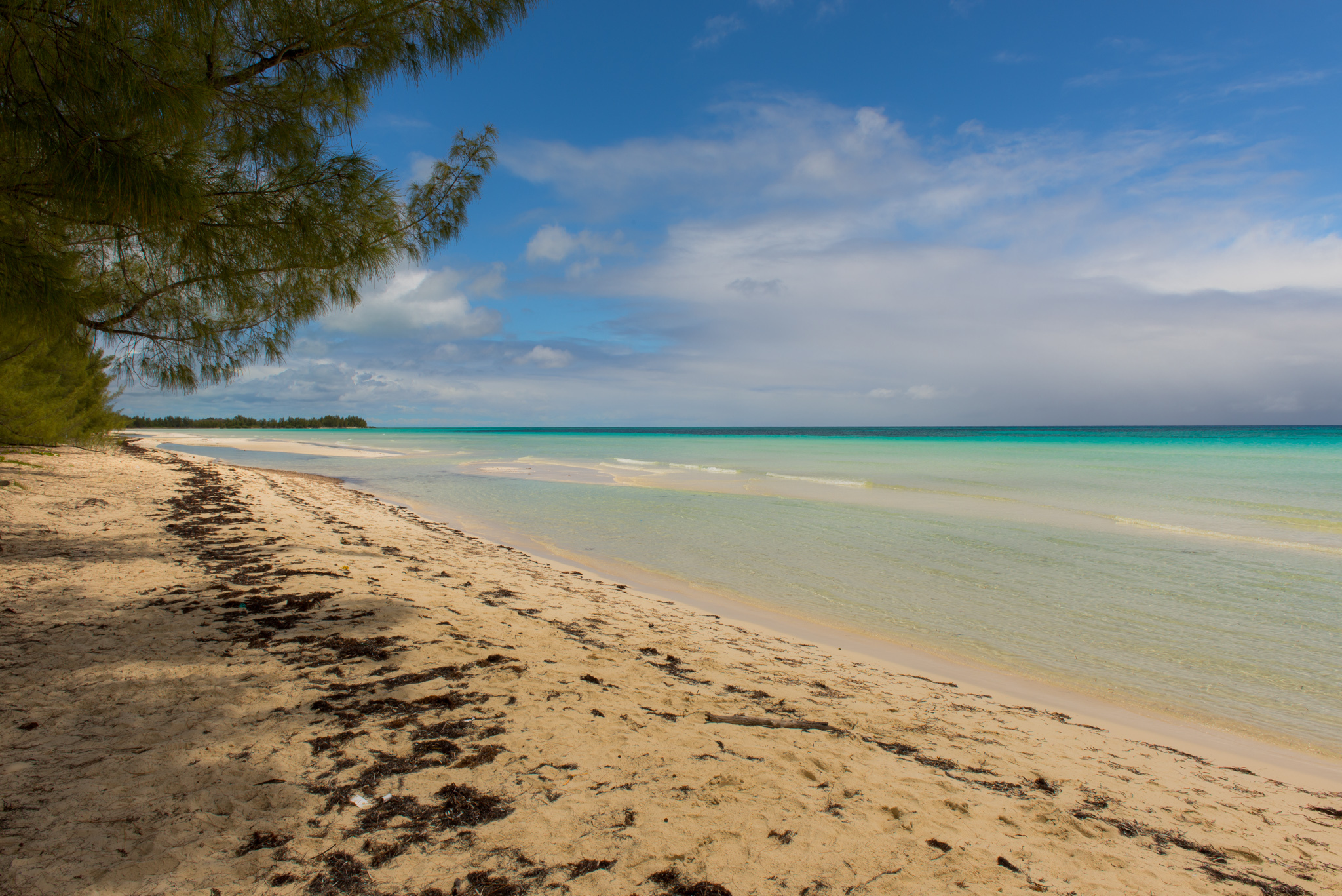 Gold Rock Beach  Beach in Bahamas  Thousand Wonders