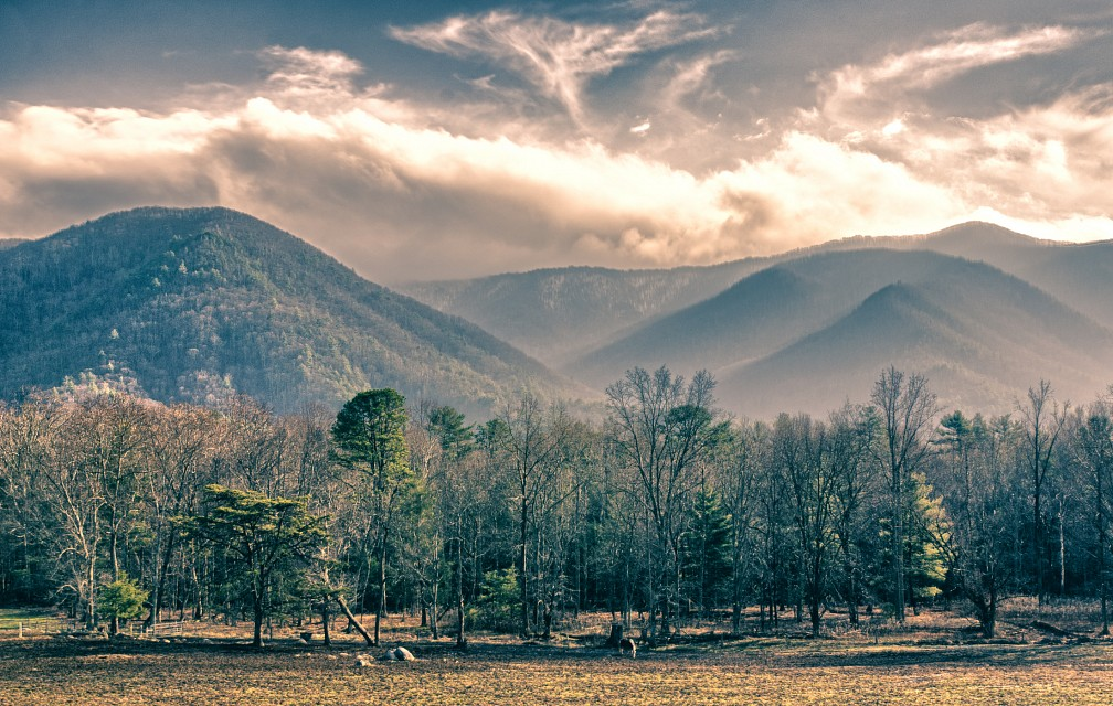 A day at Great Smoky Mountains National Park - NC - USA - Great Smoky Mountains National Park