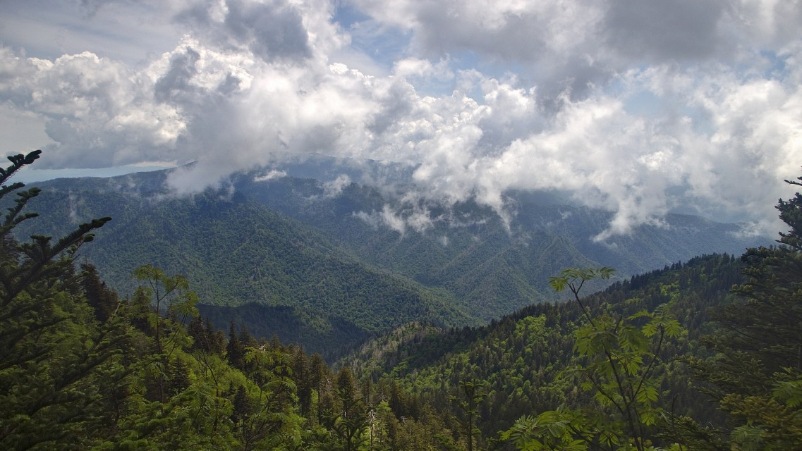 Clingman's Dome in the Clouds - seen from Alum Cave Trail on the Slopes of Mount LeConte - Great Smoky Mountains National Park