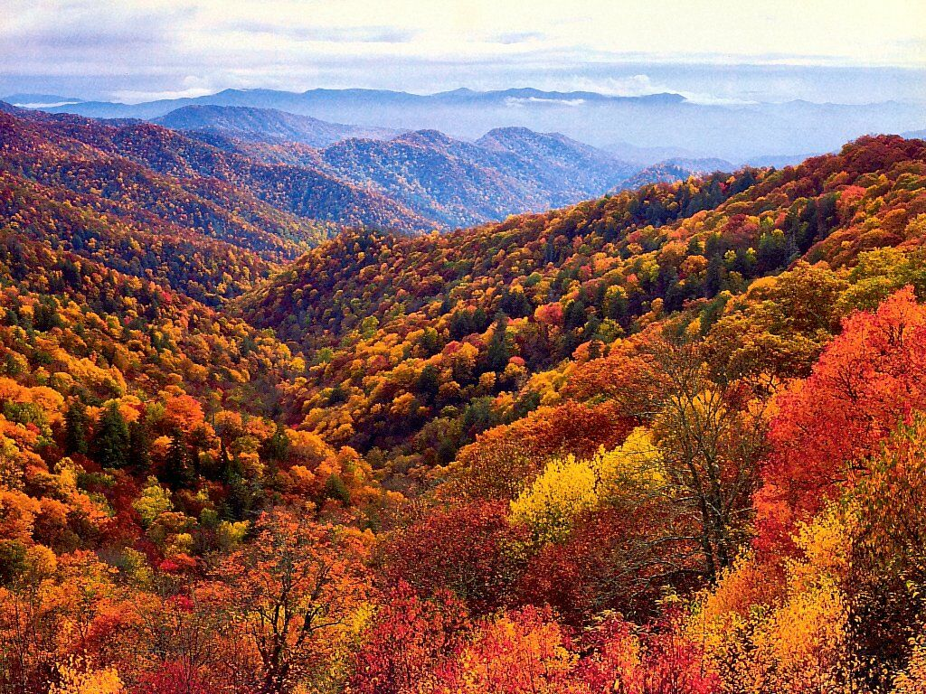 Great Smoky Mountains National Park National Park In