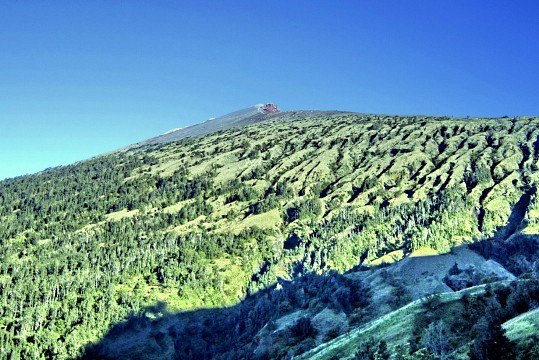 - Gunung Rinjani National