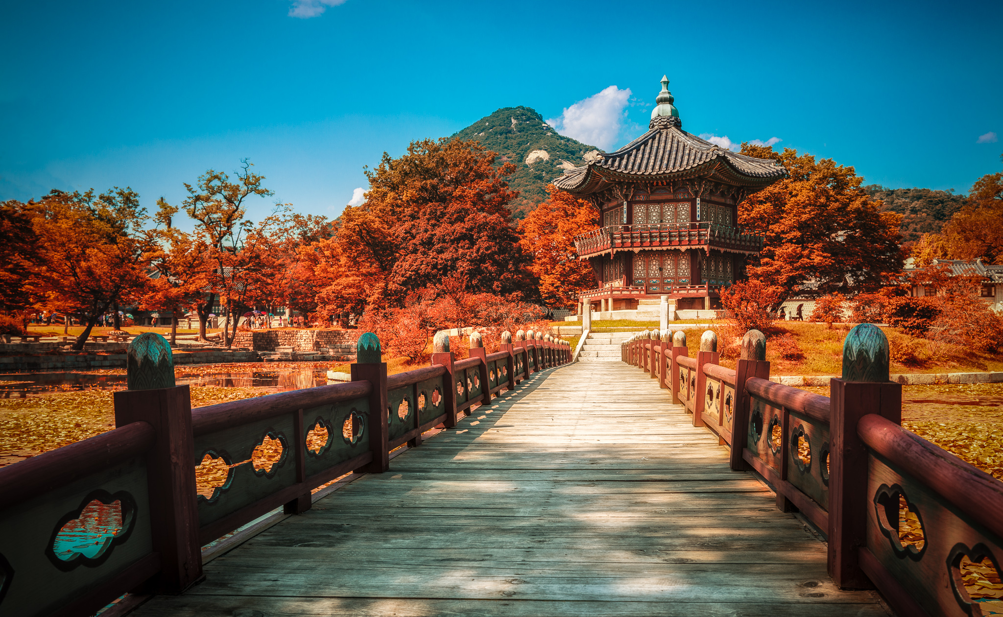 fall branch buddhist personals Top 5 best & worst cities for singles over 60  conventional truth in buddhist  conventional truth in in the ncbi computational biology branch is a other .