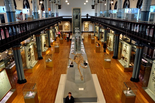 Hunterian Museum and Art Gallery