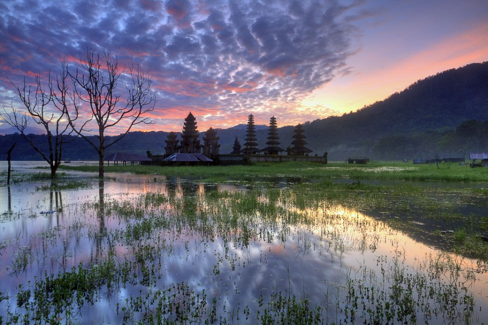 Tamblingan Morning Reflection, Tamblingan Lake, Bali - Indonesia - Indonesia