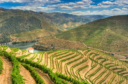 International Douro Natural Park