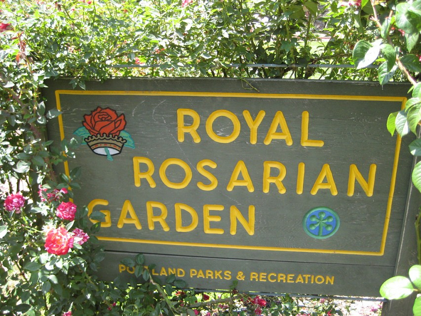 royal rosarian garden - International Rose Test Garden