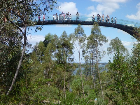 Lotterywest Federation