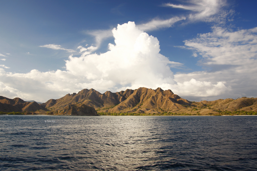 Komodo National Park 2012