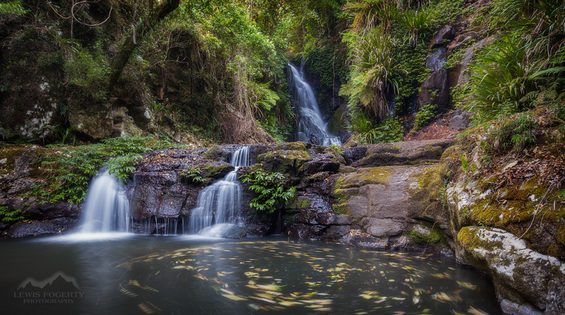 Elebana Falls, Lamington National Park - Lamington National Park