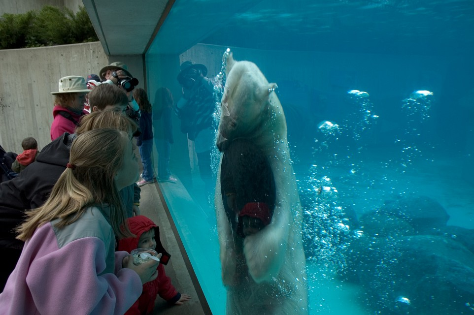 Lincoln Park Zoo - Lincoln Park Zoo