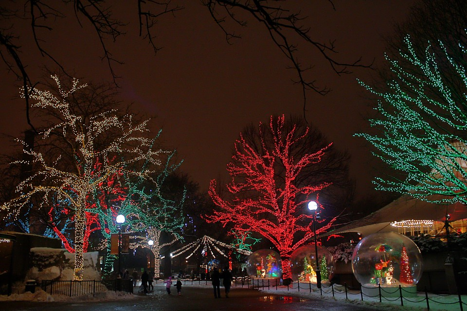 Lincoln Park Zoo Lights - Lincoln Park Zoo