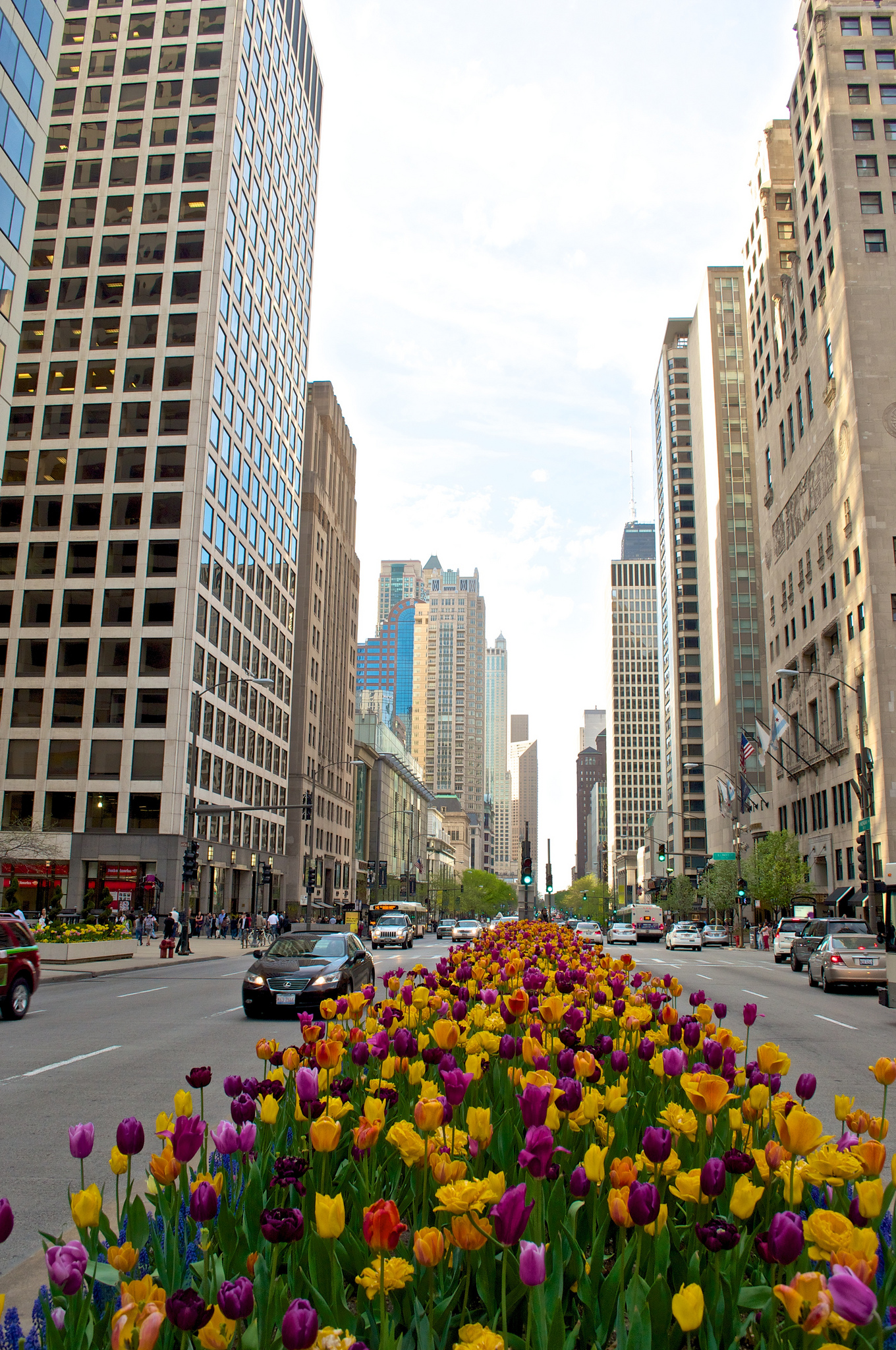 Chicago Magnificent Mile Restaurants Map