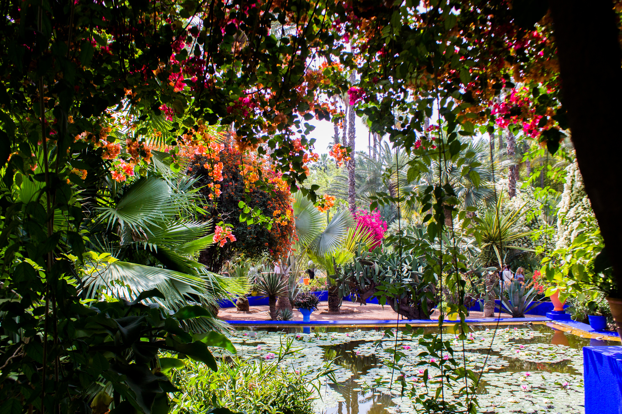 Botanic Garden In Marrakesh
