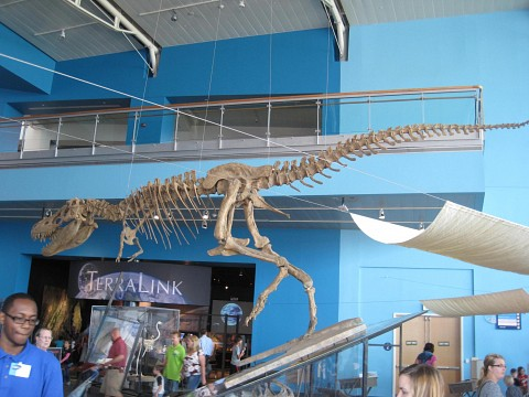 The earth sciences exhibits - Maryland Science Center