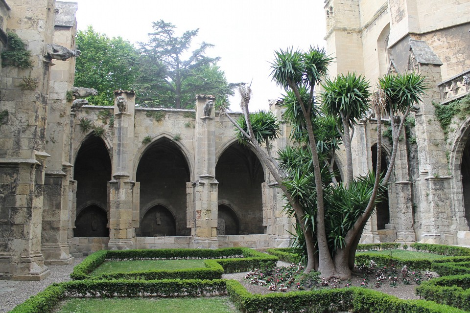 Trees! - Narbonne Cathedral