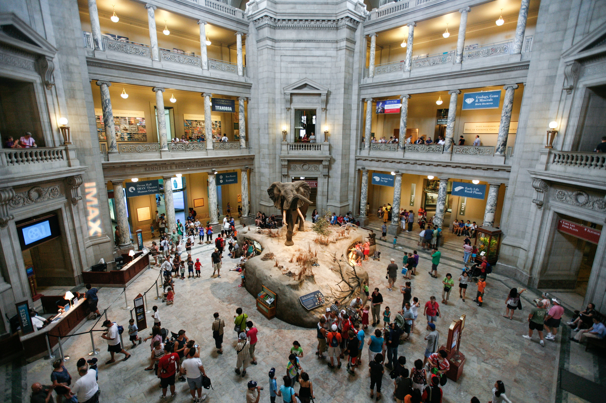 National museum of natural history museum in washington for Best museums in america