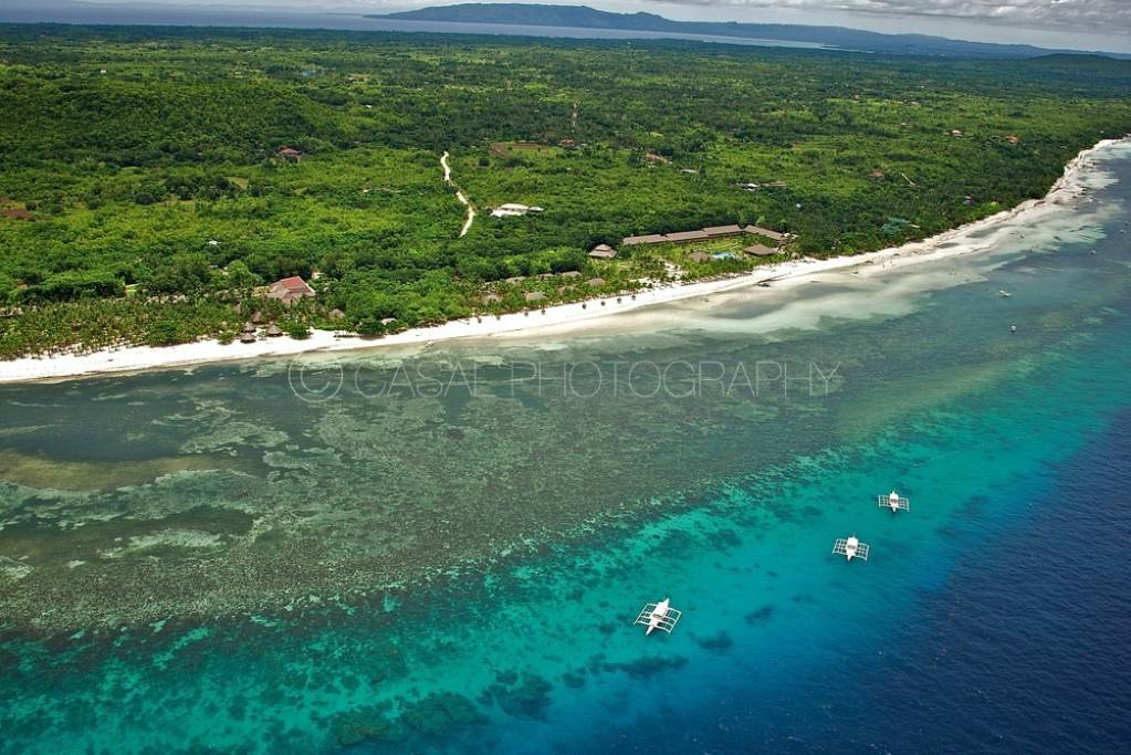 How To Get From Cebu To Panglao Island