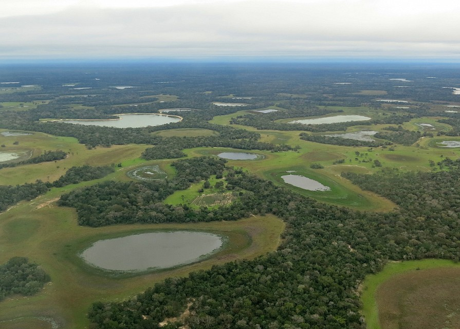 Pantanal from the air - Pantanal