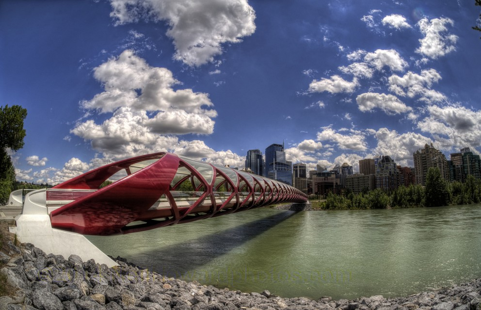 The Peace Bridge in Calgary, Wide Angle - Peace Bridge Calgary