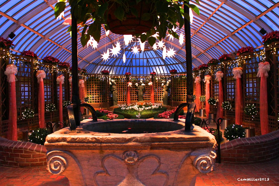 Behind the Wishing Well - Phipps Conservatory and Botanical Gardens