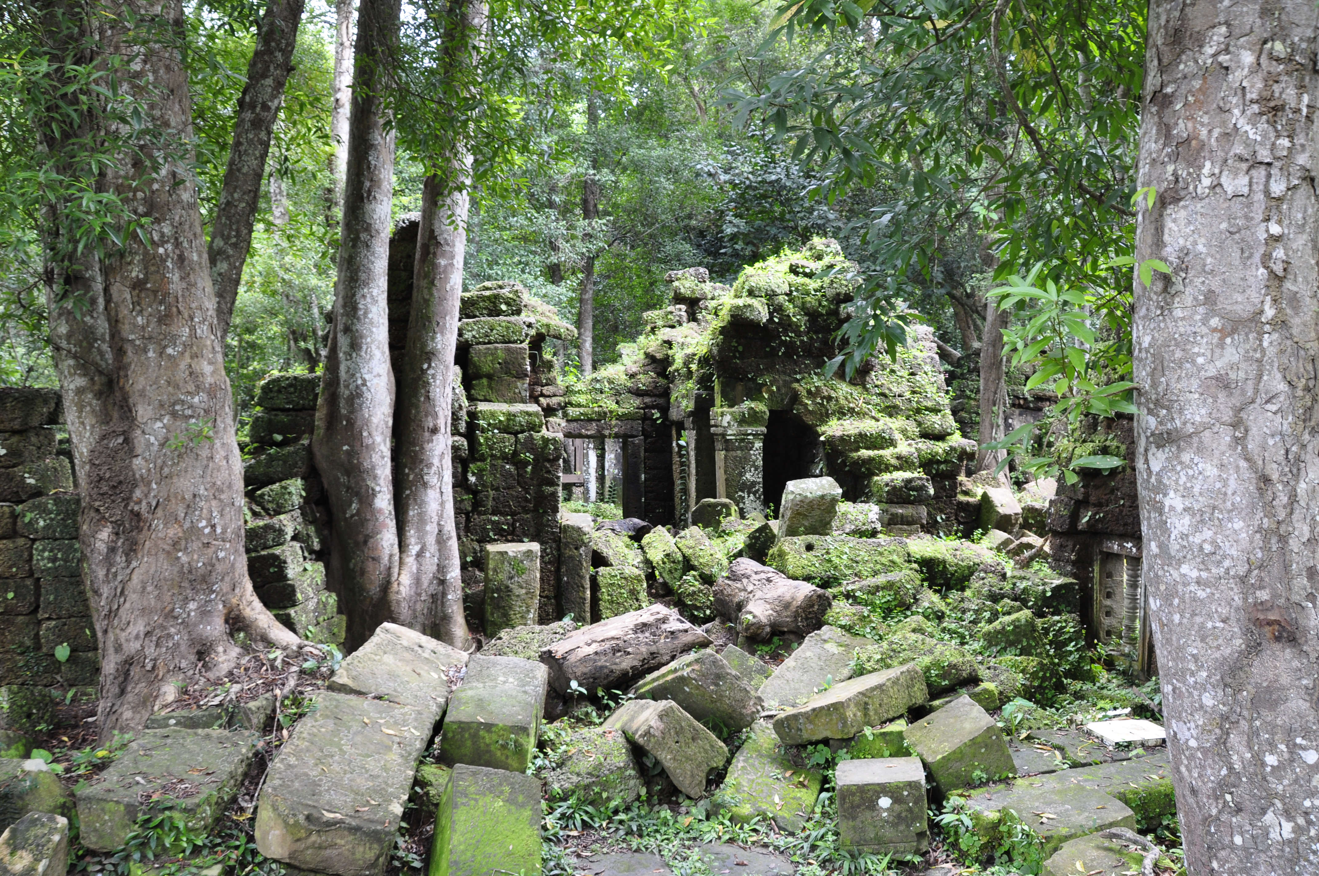 11817 additionally Phnom Kulen National Park also 1451422347 also Peaks of Otter additionally Mexico Region 220326898. on thought map